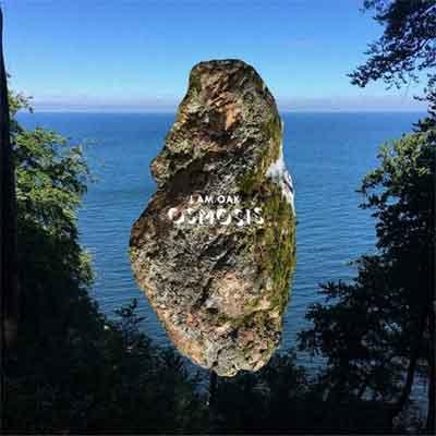 I Am Oak Omosis LP Recensie van Tim Donker